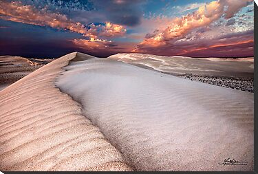 Dune Beauty by Mieke Boynton