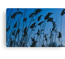 Evening Rush Canvas Print