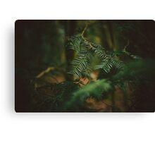 Natural Framing Canvas Print