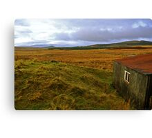 Galloway Forrest Hut Canvas Print