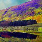 The Beautiful Lake District Cumbria by Jacqueline Longhurst