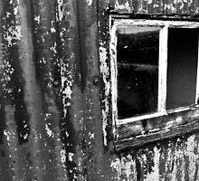 Window by CreatedPhoto