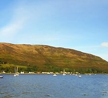 Lochranza by Stephen Maxwell