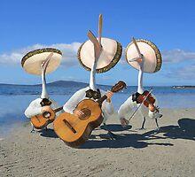 Pelican Mariachi band by Felfriast