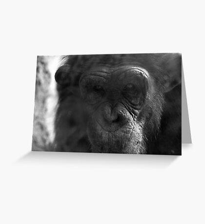 Pensive Chimpanzee Greeting Card