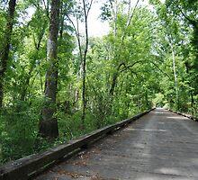 Wilderness Trail by EpeegoddessRay
