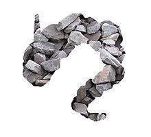 Onix used Rock Throw Photographic Print