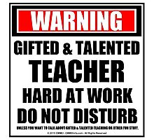 Warning Gifted & Talented Teacher Hard At Work Do Not Disturb Photographic Print