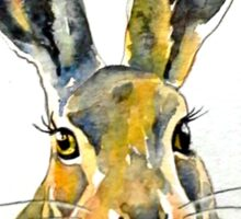 Hare 36 Sticker