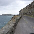 Slea Head Drive by nealbarnett