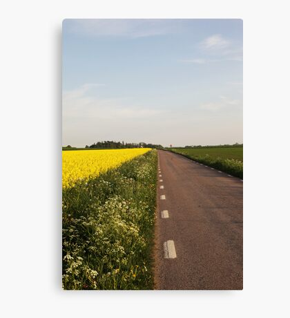 Summer Road Canvas Print