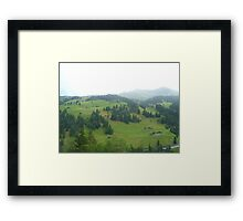 Swiss Life Framed Print