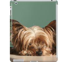Sleeping Yorkie Dog iPad Case/Skin