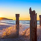 Dunedin St Clair Beach at Sunrise by Linda and Colin McKie