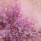 Lilac Splash by Svetlana Sewell