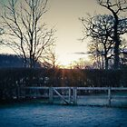 Countryside in the frost by simon17