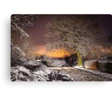 Night snow scene  Canvas Print