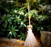 Broom by fita