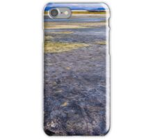 Great Salt Lake Flats iPhone Case/Skin