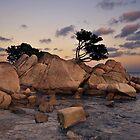 marine landscape and seashore by redapple78