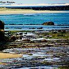The Sea Floor Rises by MissResin