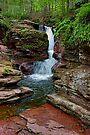 Brisk Spring Flow At Adams Falls by Gene Walls