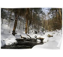 Virgin Snow Along Kitchen Creek Poster