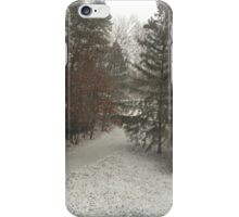 Winter Snow in the Driveway iPhone Case/Skin