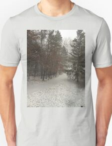 Winter Snow in the Driveway T-Shirt