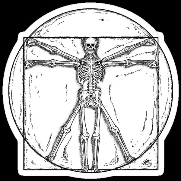Vitruvian Skeleton by ZugArt