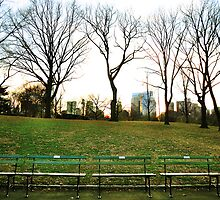 Central Park - Benches & Trees by emcreates