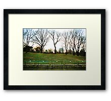 Central Park - Benches & Trees Framed Print