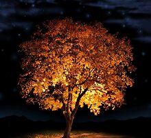 Autumn's Passing by David Lamb