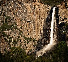 Bridalveil Fall by Phillip M. Burrow