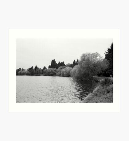 Green Lake, Fall, Seattle, Washington Art Print