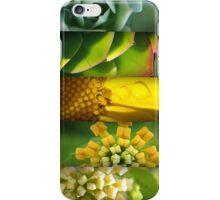 Plant Spirals  iPhone Case/Skin