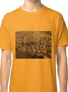 Tomato Seeds Classic T-Shirt