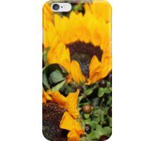 Sunflower Dreams 2 iPhone Case/Skin