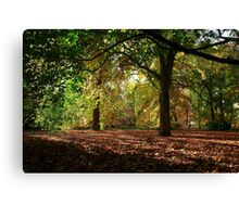 A sense of scale Canvas Print