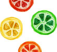 Citrus Fruit Sticker Pack by emrapper