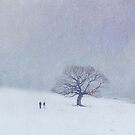A walk in the snow by Lyn  Randle