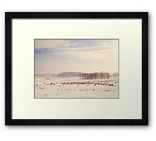 Snowy valley Framed Print