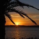 Sydney summer sunset by Flossy13