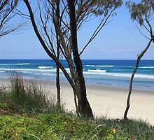 South Kingscliff Beach ... by gail woodbury