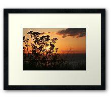 Natures Magic Framed Print