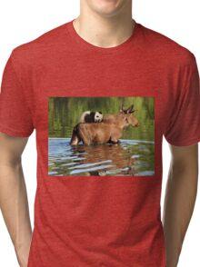 Taking a Ride on the Panda, err, um, Moose Express Tri-blend T-Shirt