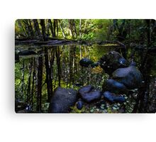 Forest Reflections 01 Canvas Print