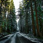 All Roads End At Home by Charles &amp; Patricia   Harkins ~ Picture Oregon