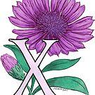 X for Xeranthemum floating by Stephanie Smith