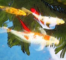 Slow Drift - Colorful Koi Fish by Sharon Cummings